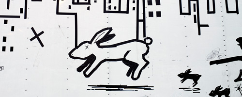 white rabbit on truck