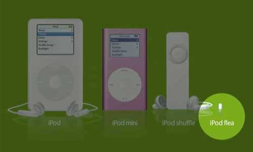 iPod Flea